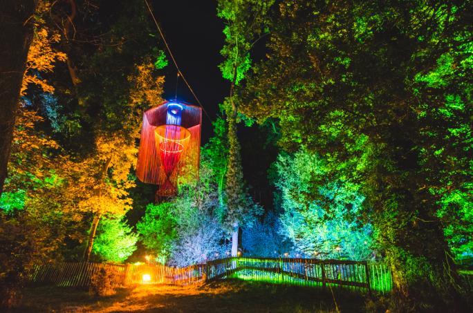 campbestival_dinglydell_woodland_nightlights_mik4987-2-21474452544