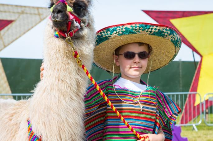 day4_llama-karma-portraits_adam38641438856644